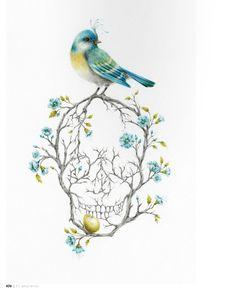curvy bird on scull