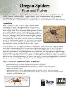 Oregon spiders : facts and fiction, by the Oregon State Department of Agriculture, Plant Division, Insect Pest Prevention and Management