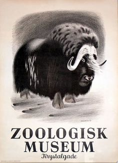 Zoologisk Museum
