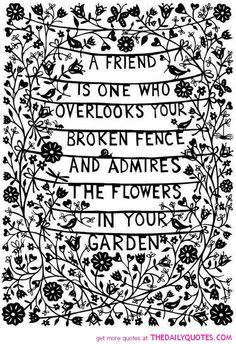 A Friend. I know too many people who love to criticize the broken fence and never even see the flowers. Ahh well, they were not meant for them anyway.