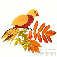 288 likes, 5 comments - Terr . Autumn Crafts, Autumn Art, Nature Crafts, Art Activities For Kids, Autumn Activities, Art For Kids, Dry Leaf Art, Leaf Animals, Fall Art Projects