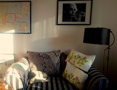 Afternoon light. Researcher's room.
