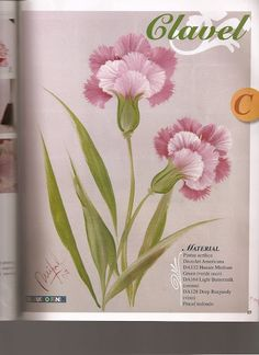 Pinceladas - ABC de las flores - TEREPINTURA - Álbumes web de Picasa