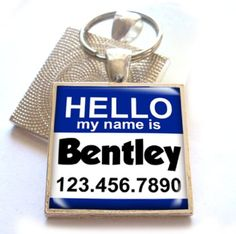 Dog and Cat Id Hello My Name Is Square Blue Regular 1 116 ** Find out more about the great product at the image link. (This is an affiliate link) Dog Tags Pet, Cat Id Tags, Cat Training Pads, Cat Shedding, Cat Fleas, Hello My Name Is, Cat Memorial, Dog Id, Cat Accessories