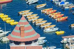 That Many? 101 Things to Do on Catalina Island: Boats in the Harbor at Catalina Island