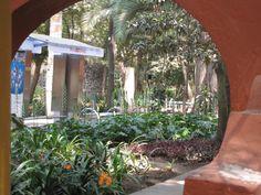 Jardín sonoro de la Fonoteca y zona de lectura.