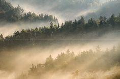 --Foggy Rays-- by Marek Kijevský on 500px