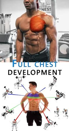 Full Chest Development 👇 CHEST Development Full lifestyle is part of Chest workouts - Gym Workout Videos, Gym Workouts, Men's Chest Workouts, Chest Workouts Without Weights, Workout Plans, Chest Workout For Men, Workout Women, Shoulder Workout Men, Shoulder Exercises