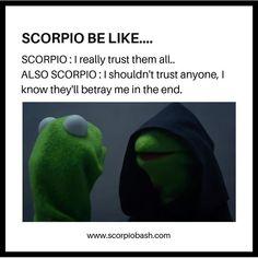 Scorpio Funny, Aries, Scorpio Zodiac Facts, Scorpio Traits, Zodiac Funny, Zodiac Signs Scorpio, Zodiac Sign Traits, Zodiac Signs Astrology, Zodiac Memes