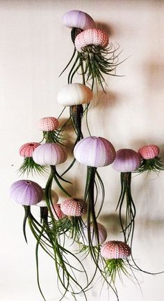 SIX Assorted Hanging Jellyfish Air Plants - Wedding Gift - Birthday Gift - Airplants Oh my gosh, love this! I think I am going to attempt to make this myself. Assorted Hanging Jellyfish Air Plants by SimplyMAEdwithlove Deco Floral, Arte Floral, Succulents Garden, Planting Flowers, Fleurs Diy, Deco Nature, Decoration Plante, Cactus Y Suculentas, Plant Decor