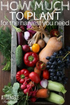 If you're planting a garden, you'll want to make sure you plant enough to feed your family. Here's a basic guide to give you an idea how many plants or seeds you'll need to get started. #vegetablegarden #homestead