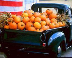 Truck full of pumpkins On Martha's Vineyard!