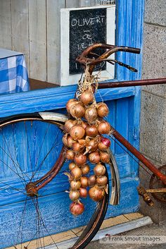 Onions from Roscoff ~ Brittany