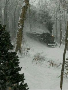 A steam locomotive plows through snowy woods, date unknown.