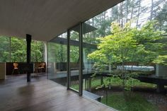 The Spread House, created by Tokyo-based Makoto Takei + Chie Nabeshima/TNA.  A singular tree grows through the center of the modern home built on stilts above a sloping hillside in a forest in Japan.