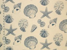Seashell fabric starfish sand dollar blue toile