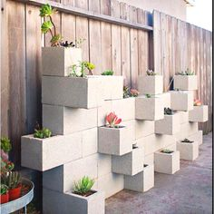 Concrete garden (vegetable planter boxes living walls)