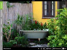 A Clawfoot Bathtub Makes A Wonderful Water Garden On The