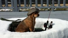 Boat snow sculpture by Dawn Gould with her dog Buddy