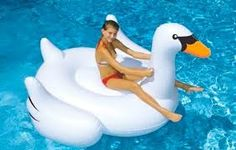 SWAN PRODUCTS - Google Search