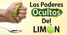 Descubra más sobre los beneficios de la Lima, propiedades de la guayaba, recetas saludables y más con el fin de enriquecer su alimentación. http://alimentossaludables.mercola.com/lima.html