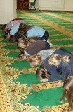 Studenti costretti a pregare ad Hallah? - Francia - 27 Novembre 2014