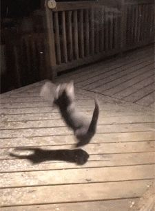 Trying to catch snow flakes