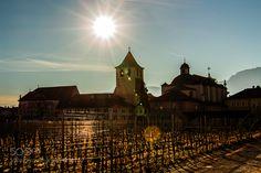 Kloster Muri Gries Kloster Muri Gries mit Reben und Sonne.