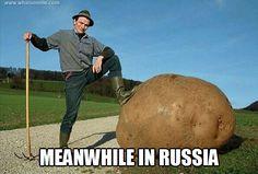 Meanwhile in Russia Meanwhile In Russia, Modern Agriculture, Lol, World's Biggest, Humor, Potato, King, Potatoes, Humour