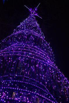 Purple Christmas by savannah Purple Love, All Things Purple, Purple Hues, Shades Of Purple, Deep Purple, Purple And Black, Pink Purple, Purple Stuff, Purple Gowns
