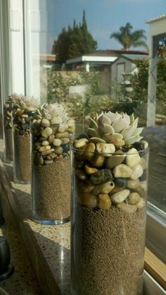22 creative ideas to create beautiful terrariums for your decor Salons Succulent Arrangements, Cacti And Succulents, Planting Succulents, Planting Flowers, Plant In Glass, Glass Planter, Succulent Gardening, Container Gardening, Air Plants