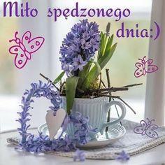 Good Morning, Elf, Spring, Pictures, Album, Plants, Fotografia, Polish, Balcony