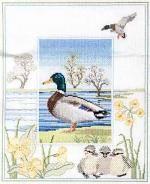 Mallard Cross Stitch Kit from Derwentwater Designs