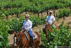 indian oaks trailer ranch temecula ca - Google Search