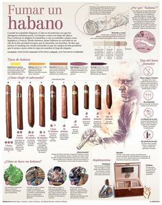 Smoking an Habano, infographic by Juan Pablo Bravo