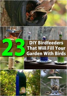 23 DIY Birdfeeders That Will Fill Your Garden With Birds Birdfeeders are a great way to enjoy wildlife at its best. If you live in an area that has many birds, a couple of strategically placed feeders will allow you to view those pretty birds up close and personal. You don�t necessarily have to go out and buy an expensive birdfeeder though. You can easily make one yourself. Most feeders take just a little time and very little money.