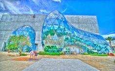 Museo Dali, #Florida