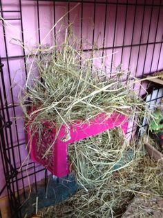 Basket Rabbit Hay Rack - PetDIYs.com could also work for guinea/skinny pigs!