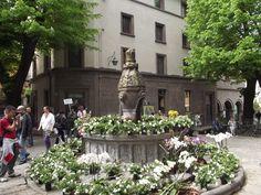 La piazza della morte..in fiore  The piazza della morte with flowers..