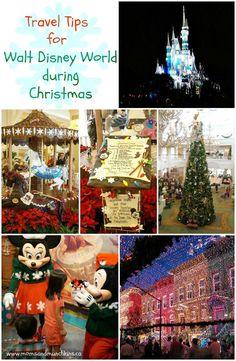 Travel Tips For Walt Disney World During Christmas - a family travel adventure!