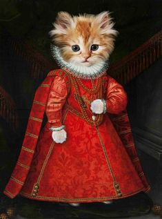 Dog Canvas Painting, Dog Paintings, Crazy Cat Lady, Crazy Cats, I Love Cats, Cool Cats, Portrait Renaissance, Costume Chat, Yorky
