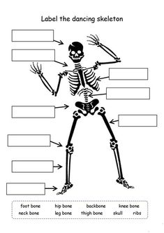 Science gets REALLY interesting in grade. Bones, cells, digestion, animals and more are featured here in our Grade Science Worksheets. Are you ready to learn? There's no more fun way than with worksheets. Science Tools, Science Worksheets, Worksheets For Kids, Science For Kids, Printable Worksheets, Science Activities, Science Sans, Free Printable, Decimals Worksheets