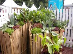 Key Hole Gardening  is an extremely attractive way to grow veg with  heaps of soil based around a compost that continually feeds the garden with the rotting matter as it grows.