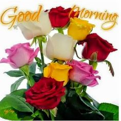 Rajesh Kumar - See how beautiful rosees,God has added one more day in your life. Not necessarily bcoz you need it but bcoz someone else..... Might need any one, Good morning happy every Sunday!! https://www.facebook.com/profile.php?id=100010145671431