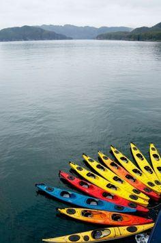 "A Carousel of Kayak Color – ""Live"" Cruise Review: Un-Cruise Safari Endeavour, Alaska 2013 – The Offboard Experience | Popular Cruising (Image Copyright © Jason Leppert)"
