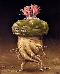 Image result for peyote cactus art