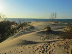 Indiana Dunes National Lakeshore, Mt. Baldy summit