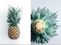 How to grow your own pineapple plant Follow these easy steps to get your pineapple plant started: Step 1: Buy Fresh Pineapple. Step 2: Slice Off Pineapple Crown. Step 3: Remove Leaves from Stalk. Step 4: Allow Stalk to Dry. Step 5: Plant Pineapple Stalk. Step 6: Water Pineapple Stalk. Step 7: Wait for Pineapple to Root. Step 8: Repot Pineapple Plant.