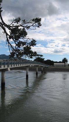 Raglan, New Zealand :) I was dared to dive off this bridge..... Aaaaand I did it!!!!!! Got a funny video of me screaming!!!