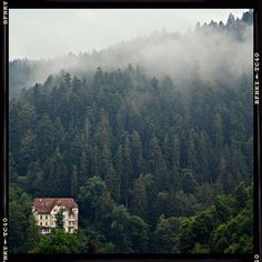 And the Black Forest couldn't be any more serene. | 26 Reasons Why You'll Never Be The Same After Studying Abroad In Germany